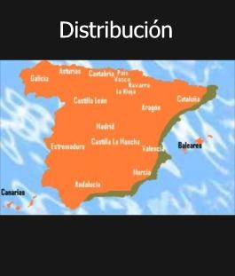 AGUJA DE RIO